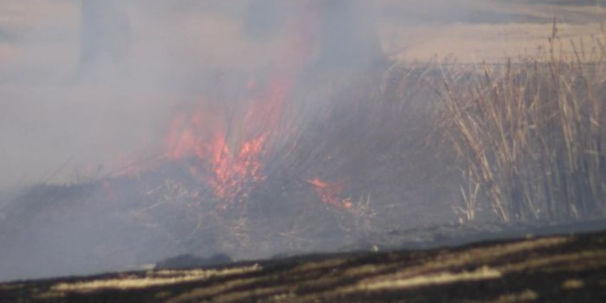 Controlled burn happening near Reese Center Thursday, Friday