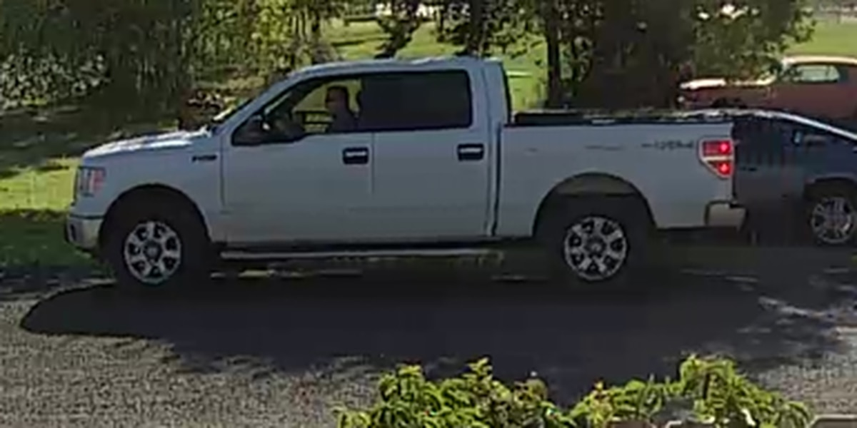 Seminole police searching for person of interest in trailer theft