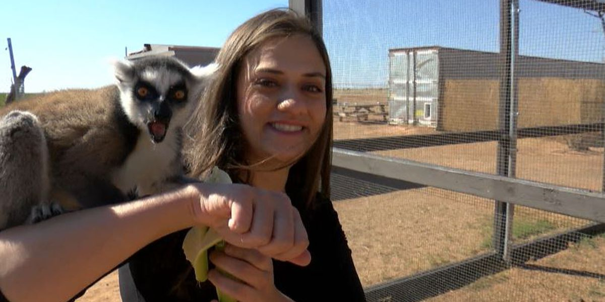 Lubbock Lemur Rescue needs your help