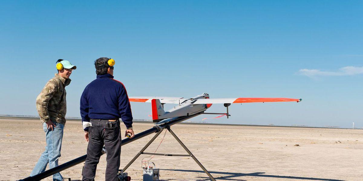 New Texas law criminalizes drone use near animal farms