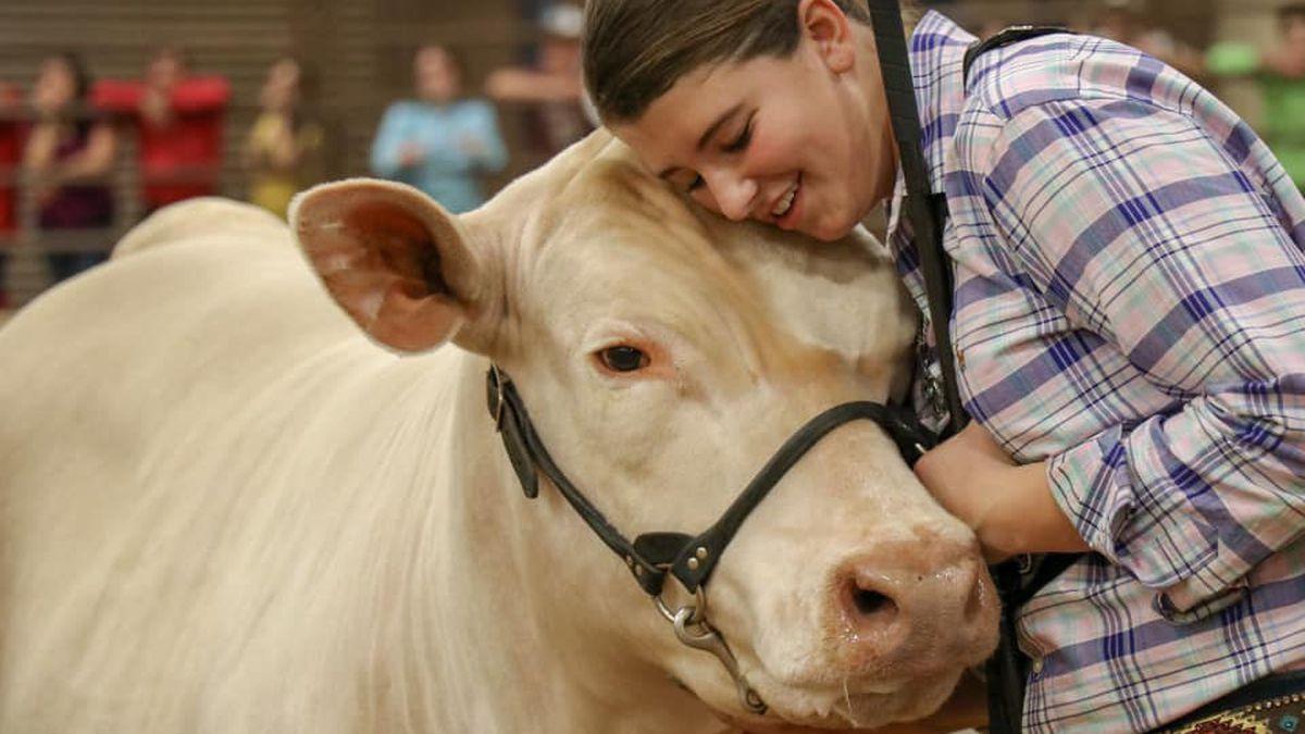 Denver City teen's steer named 2018 State Fair of Texas Grand Champion