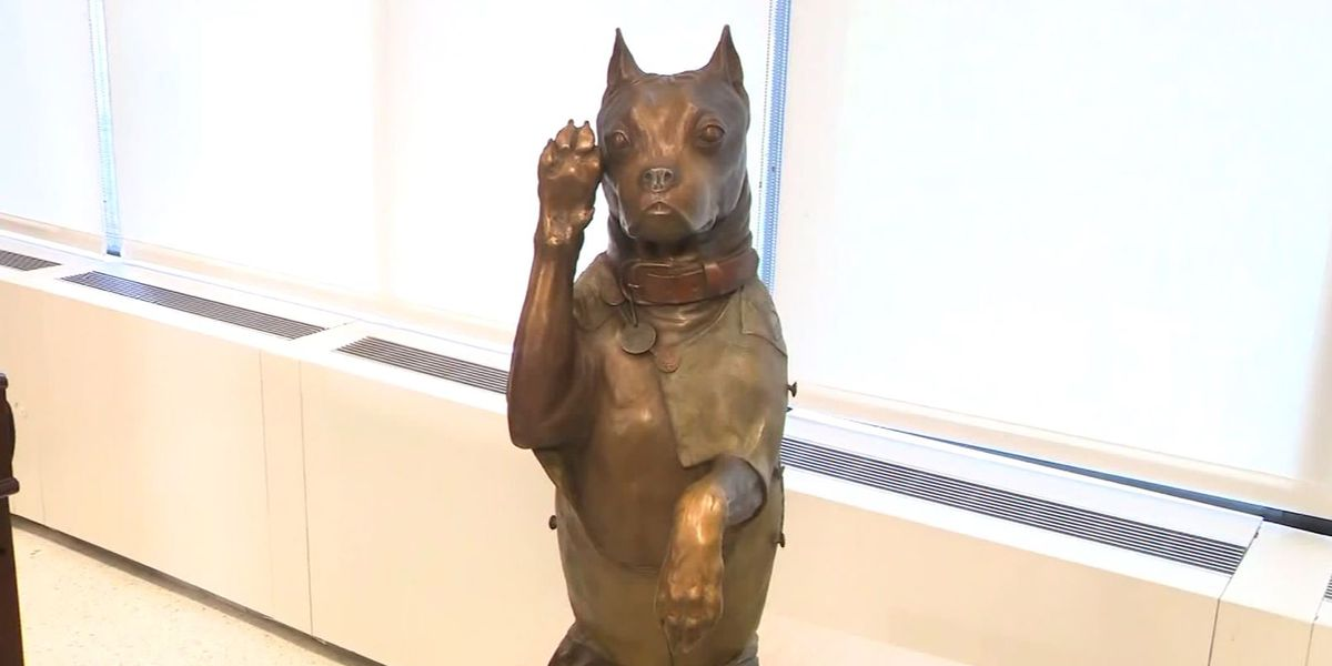 'Sgt. Stubby,' beloved WWI service dog, honored with bronze statue