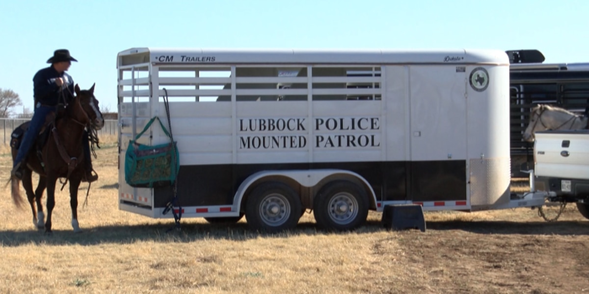 Lubbock Police Mounted Patrol shows love for horses