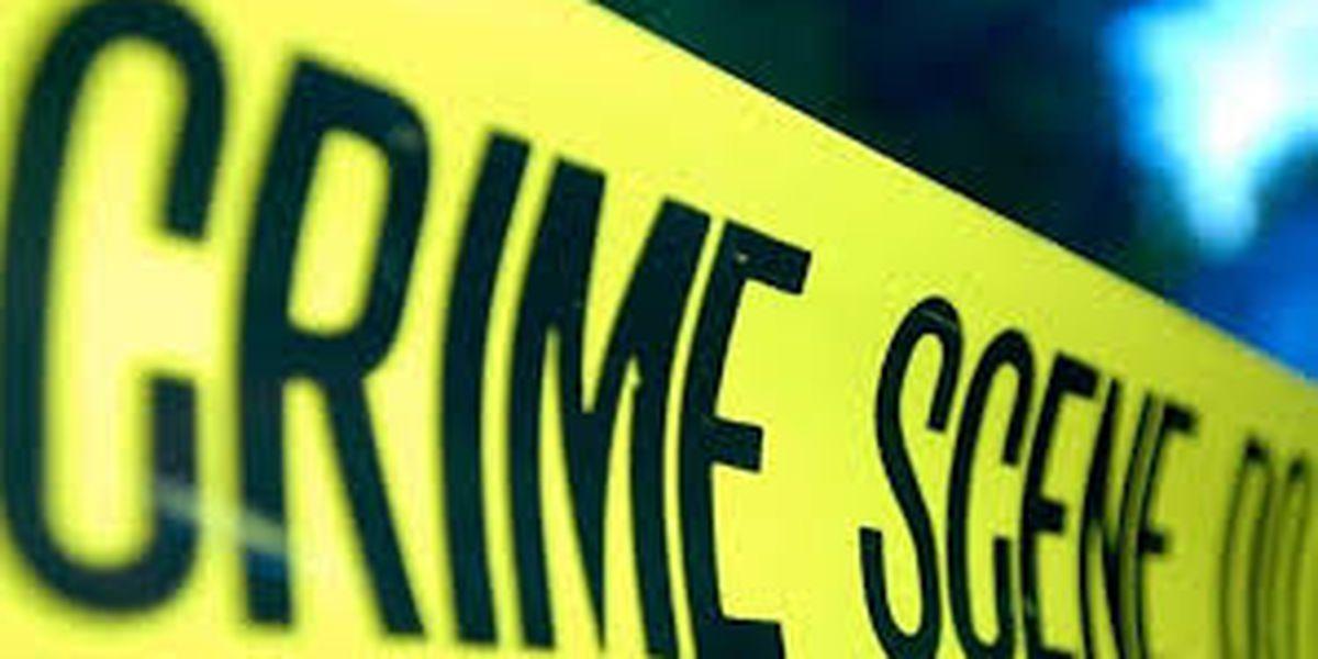 Teen's pellet gun robbery attempt thwarted after victim pulls out actual gun
