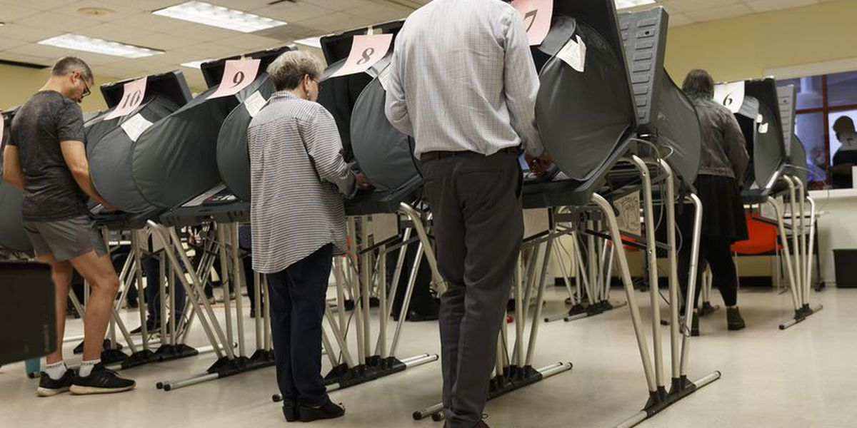 Just a quarter of registered voters in Texas participated in the 2020 presidential primary