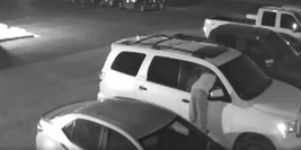 Police searching for suspect who smashed but didn't grab in attempted burglary