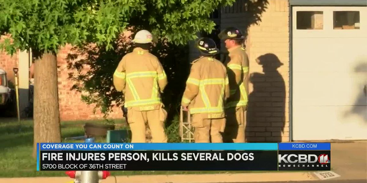 4 dogs killed in Sunday evening house fire